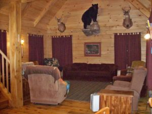 newly constructed wood cabin