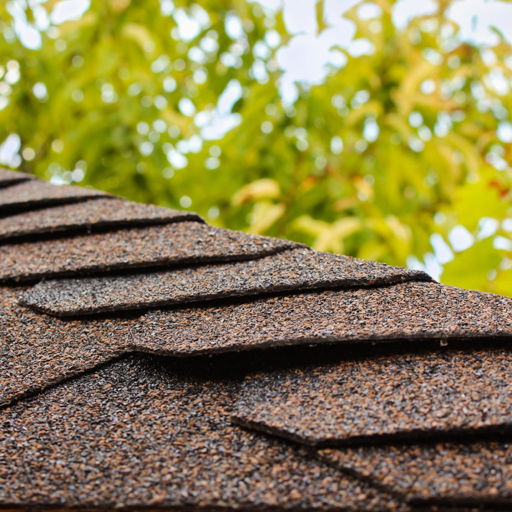 close up of asphalt roof