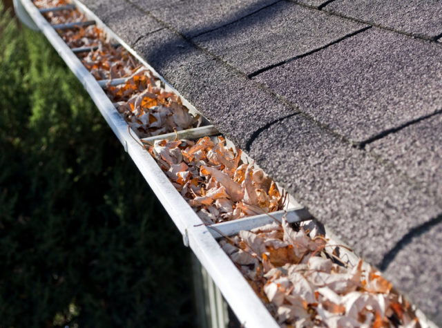 Do Gutter Guards Really Work?